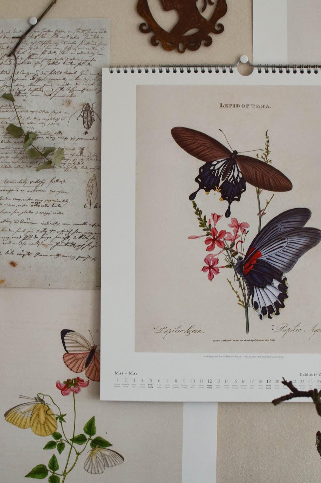 Botanische Kalender 2019 die ideale Wanddeko für ein schönes Zuhause. Dekotipp Dekoideen