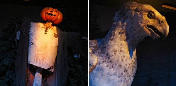 harry potter buckbeak pumpkin head