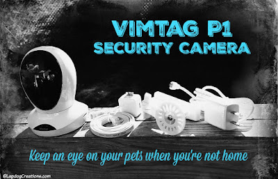 Vimtag P1 Security camera