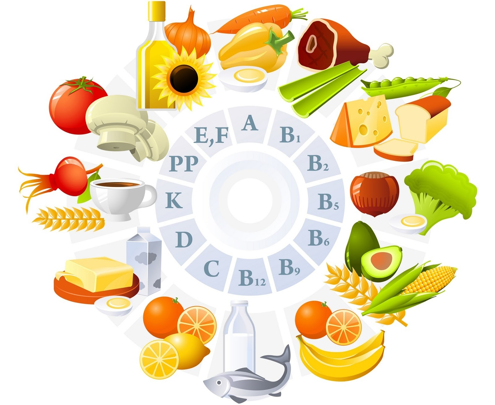 Cara Kerja Vitamin untuk daya tahan tubuh