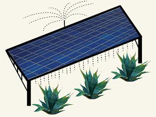 http://agriculturers.com/agrovoltaica-las-ventajas-de-unir-agricultura-con-paneles-solares/