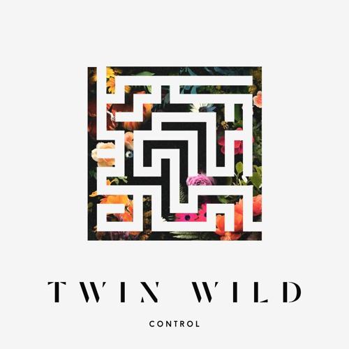 Twin Wild - Control EP
