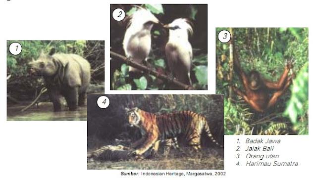 Materi IPA 6 SD : Kegiatan Manusia yang Memengaruhi Ekosistem atau Keseimbangan Alam