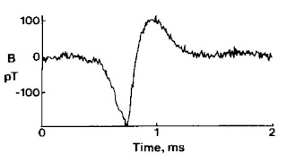 The magnetic field of a single axon. The data was recorded with no averaging.