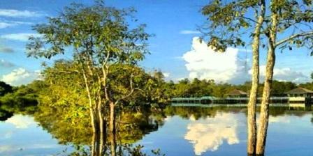 Danau Tahai palangkaraya