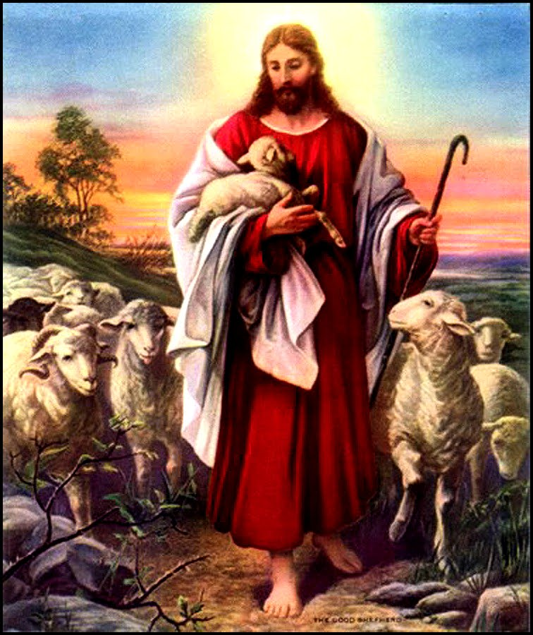 TUHAN YESUS TERANG DUNIA: MEMBEDAKAN DOMBA DAN KAMBING