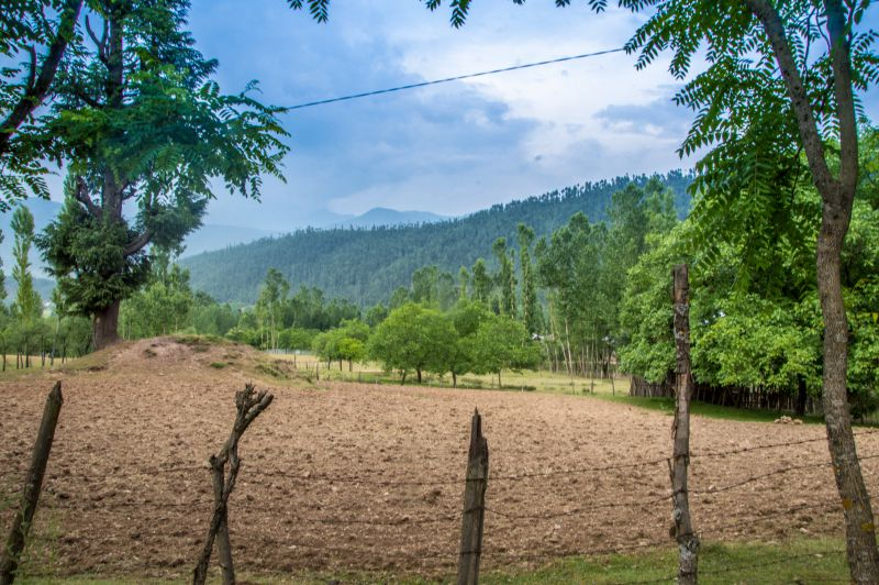 A farm being prepared for cultivation