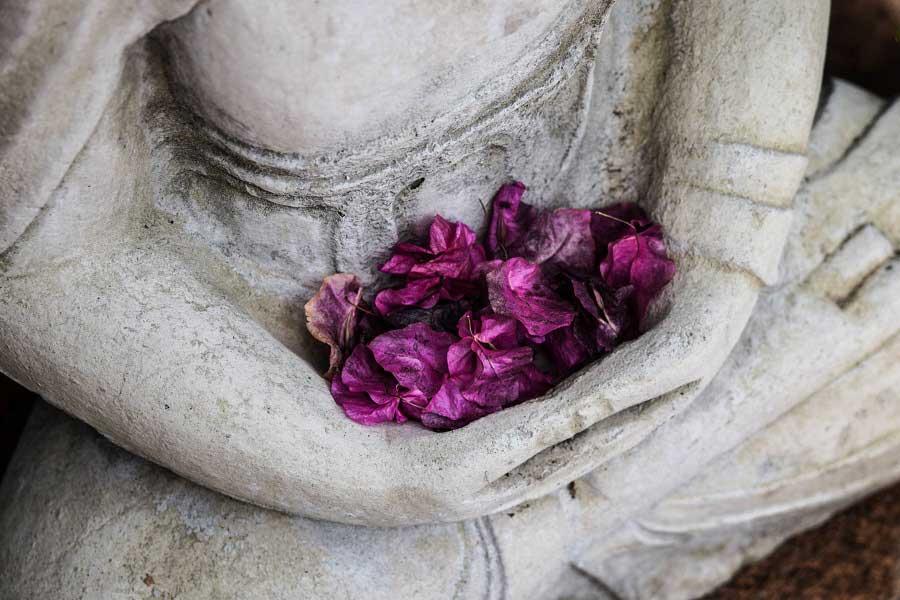67 frases  de Buda