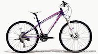 Sepeda Gunung Wanita Polygon Cleo 4.0 Tektro Draco Hydraulic Disc Brake 26 Inci