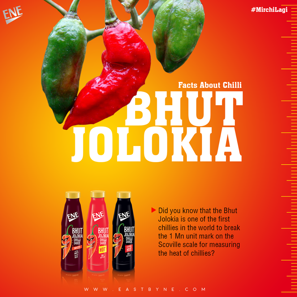 Top 7 Hottest Chillies In The World