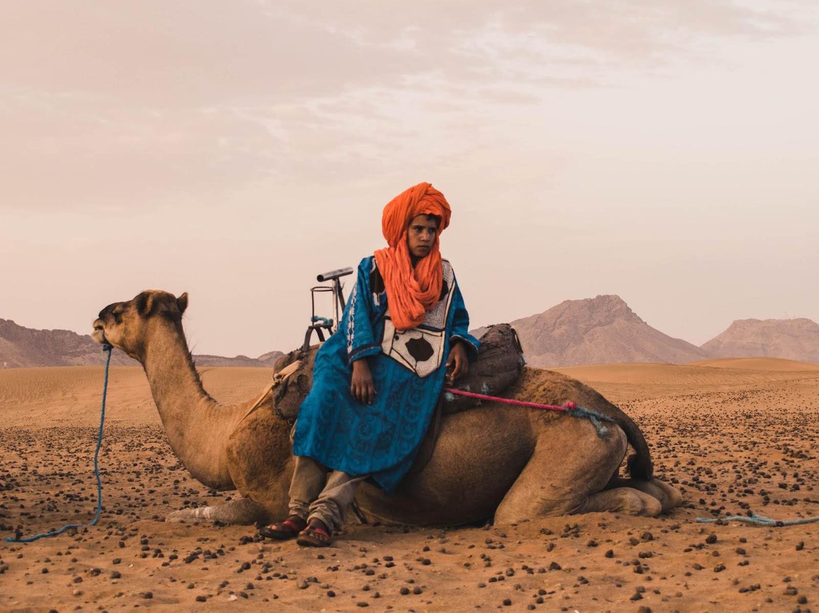 Berber in Sahara Desert Camel