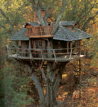 "treehouse - Tree Houses for ""Grown-ups"""