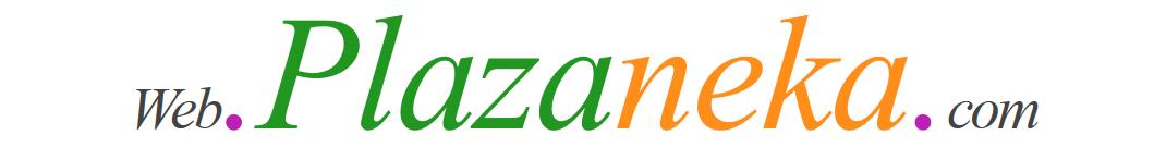 Web.Plazaneka.Com