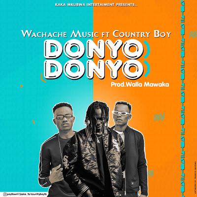 Download Audio | Wachache Music Ft. Country Boy- Donyo Donyo
