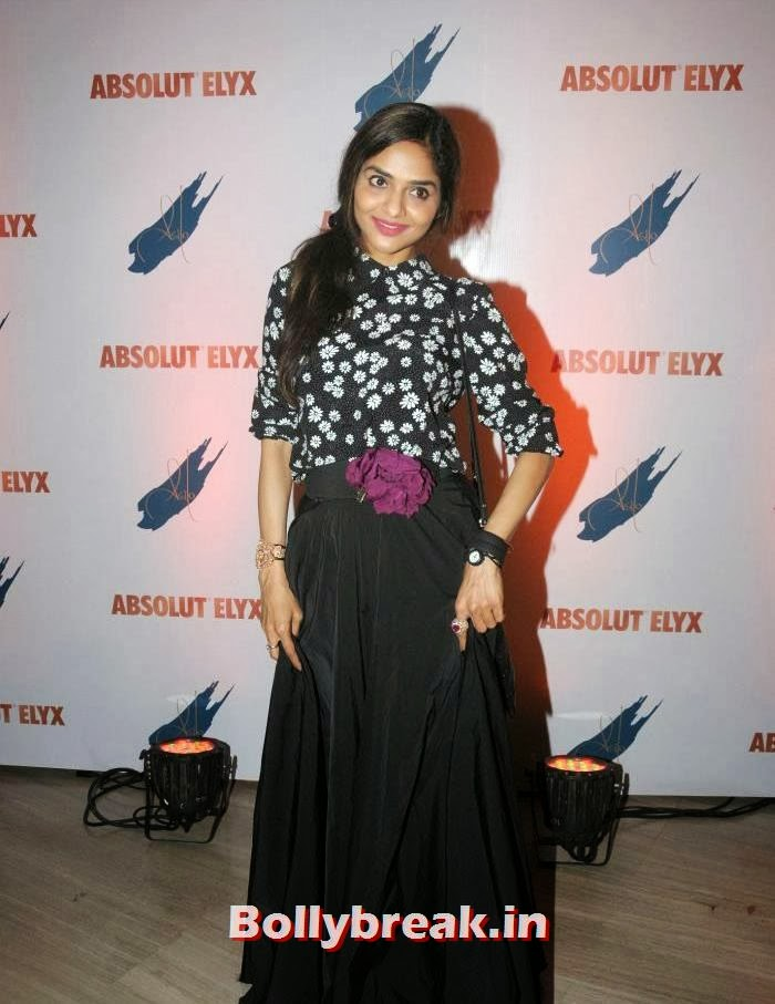Madhoo Bala, Suchitra Pillai Hosted Absolute Elyx Party