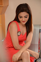 Siddhartha Movie Heroine Ragini Nandwani Photos, Siddhartha Teaser Launch Picture