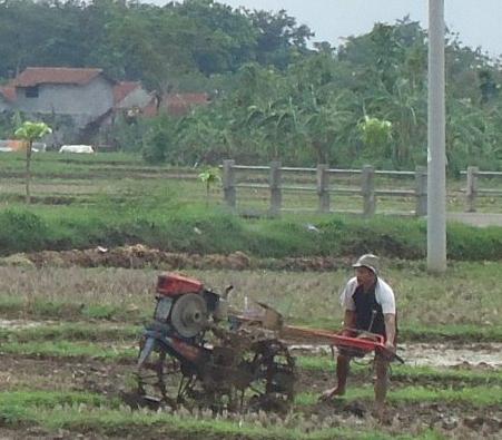 Cara Pengoperasian Traktor Tangan Bajak Sawah