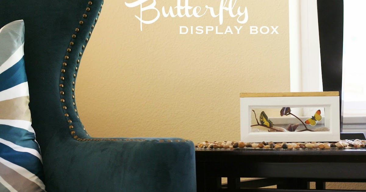 Make Decoupaged Butterfly Display Box