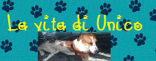 http://www.lavitadiunico.blogspot.com