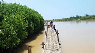 http://www.teluklove.com/2017/05/destinasti-objek-wisata-hutan-mangrove.html