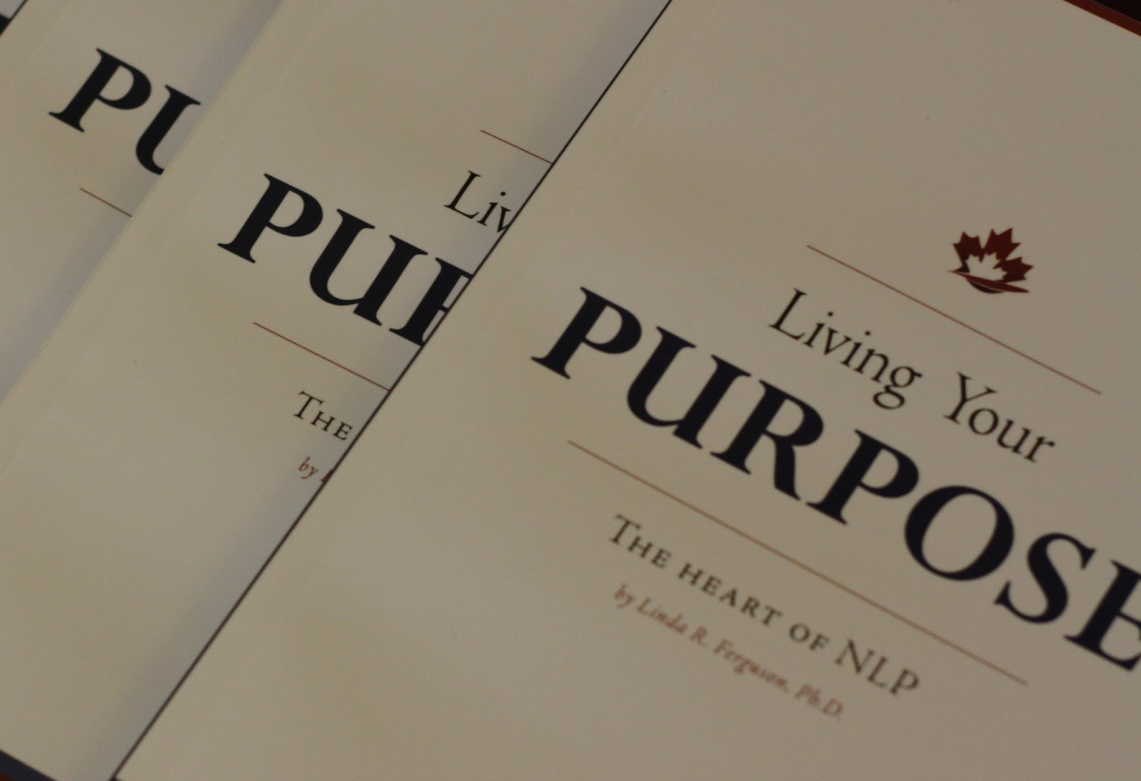 Lot of 7 The Purpose Driven Life books and 1 Journal by Rick Warren Hardcover HB