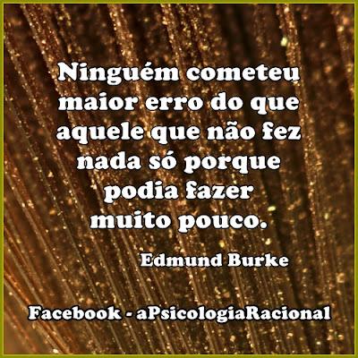 Ninguém cometeu erro maior do que aquele que não fez nada só porque podia fazer pouco. Edmund Burke