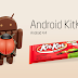Vulnerability in Android Jelly Bean and Kitkat