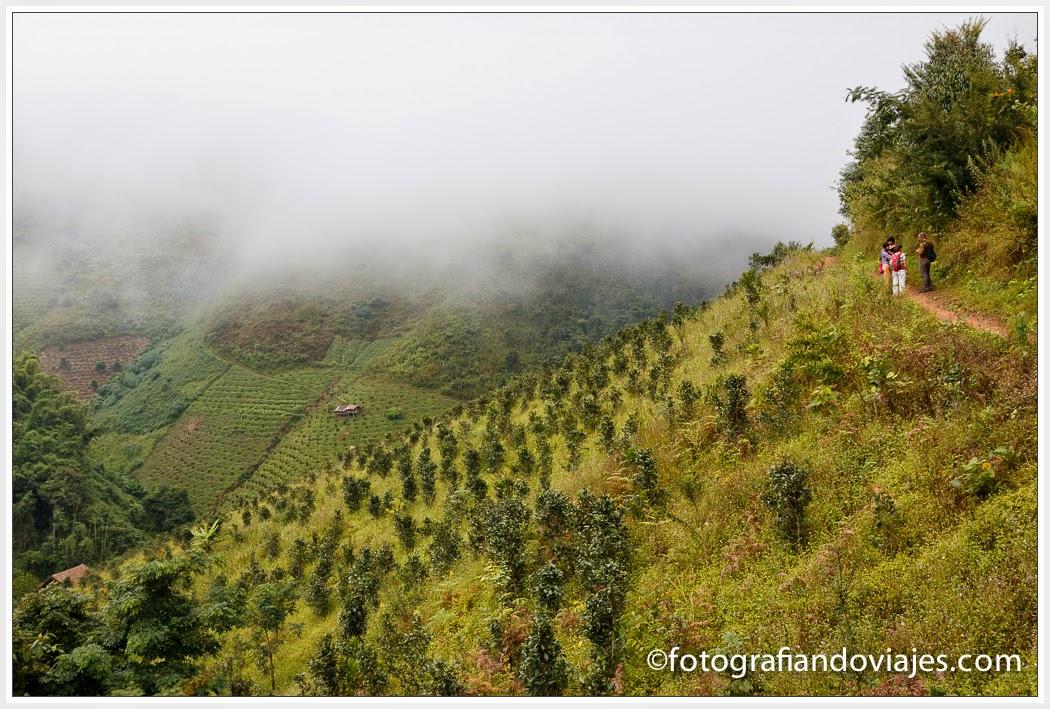 Trekking por las montañas de Kalaw