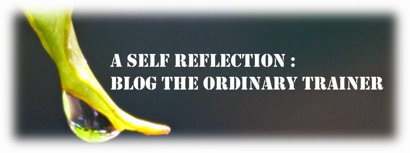 Giveaway - A Self Reflection : Blog The Ordinary Trainer