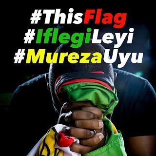[feature]R. Peels - Free Zimbabwe #ThisFlag