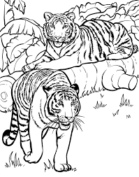 Tiger Colony At Forest Coloring Pages For Print