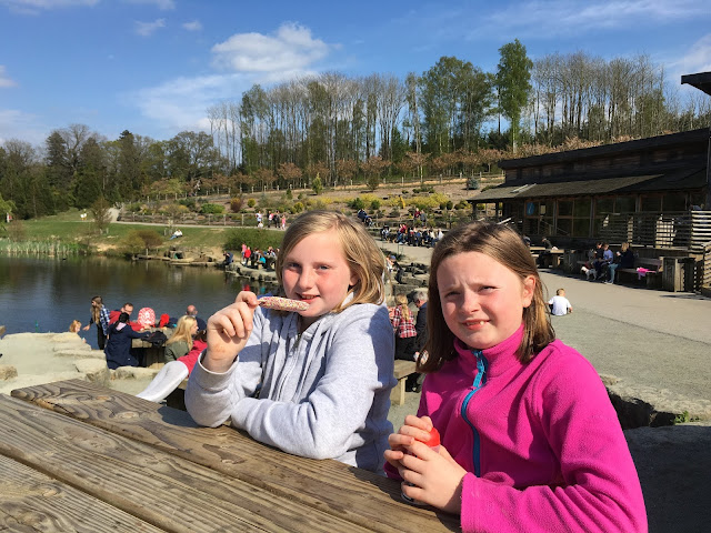 children at bedgebury