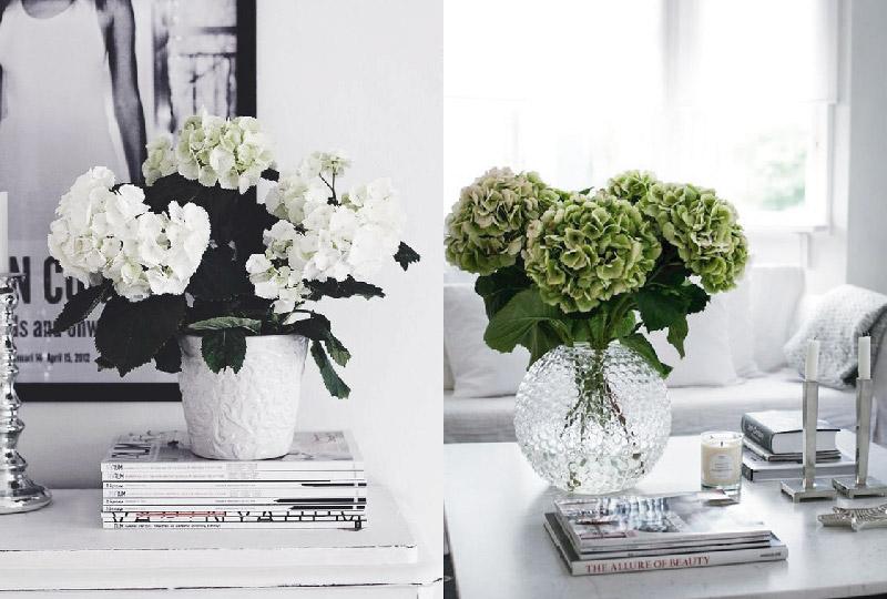Decorare casa con i fiori freschi