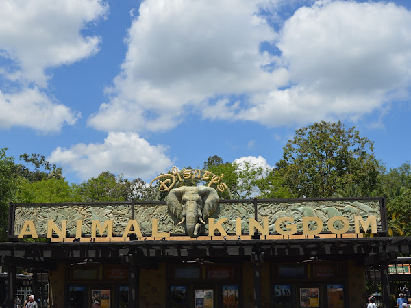 Walt Disney World | Animal Kingdom Ride Guide and Spoilers