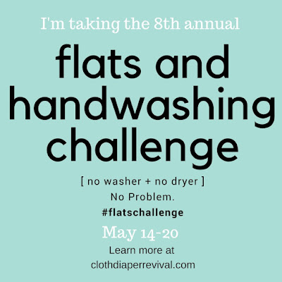 Flats Challenge 2018 Cloth Diaper Revival