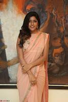 Eesha Rebba in beautiful peach saree at Darshakudu pre release ~  Exclusive Celebrities Galleries 069.JPG