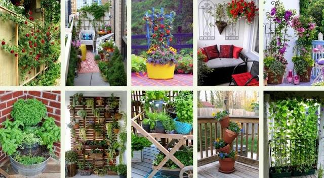 50+ Ιδέες για να τοποθετήσετε Φυτά σε Μικρούς Κήπους - Μπαλκόνια