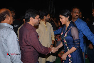 Nenu Local Audio Launch Stills  0153.JPG