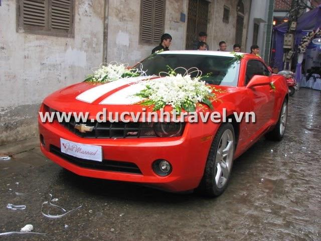 Xe cưới Camaro đỏ nổi bật của cặp đôi du học sinh Mỹ - DUC VINH TRANS 5