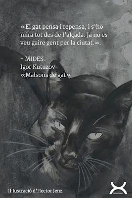 gatos en blanco y negro