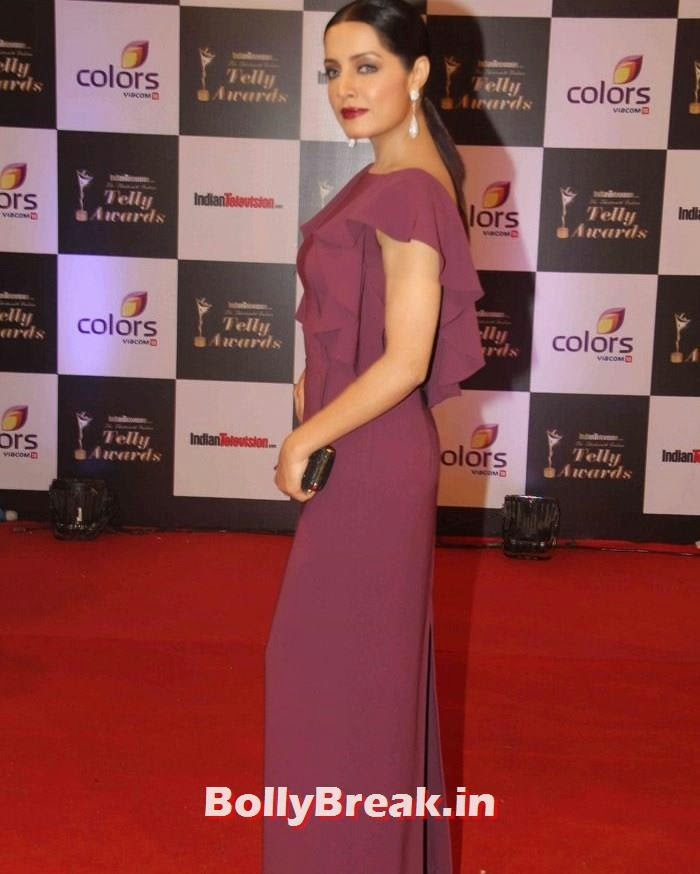 Celina Jaitly, Pics on Red Carpet of 13th Indian Telly Awards 2014