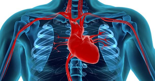 As doenças graves do Coração