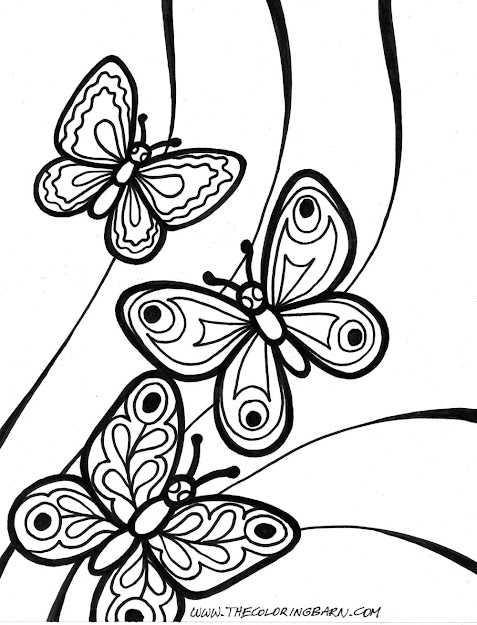 Images About Butterfly Coloring Pages On Pinterest With Regard To Butterflies  Coloring Page