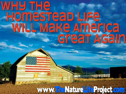 Why the Homestead Life Will Make America Great Again