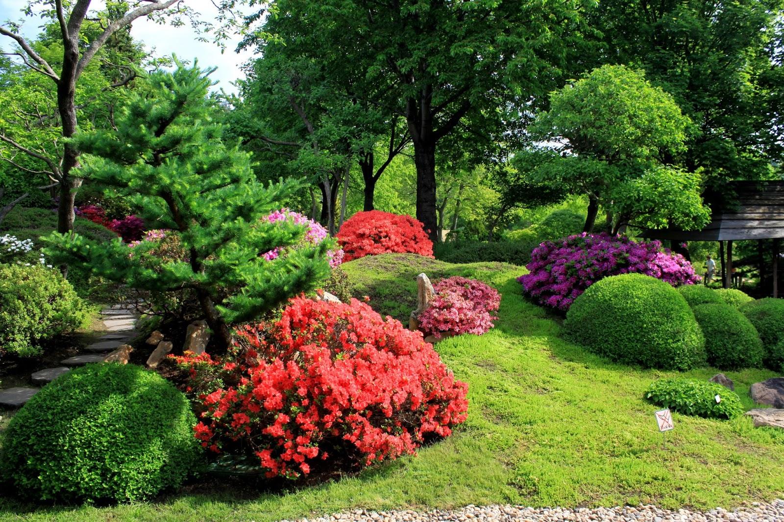 Fond ecran gratuit printemps paysage fonds d 39 cran hd for Foto fond ecran