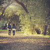 Sahabat Masa Kecil Sebuah Kenangan Tak Terlupakan