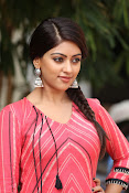 Anu Emmanuel beautiful photos-thumbnail-16