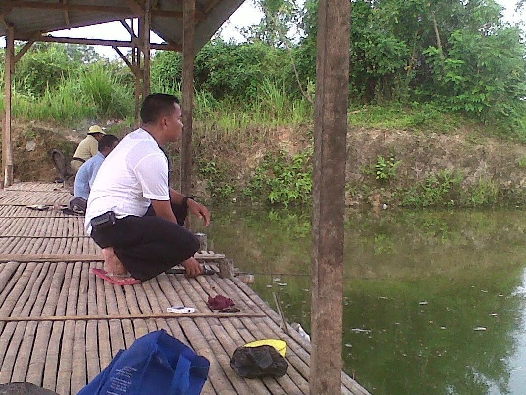 Umpan Juara Lomba mancing Ikan Mas Ala Pa Adang