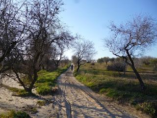 Pistas arenosas entre Cebolla y Montearagón