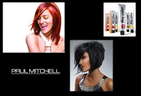 paul mitchell haircut prices work in the office using display stands to target the 4628